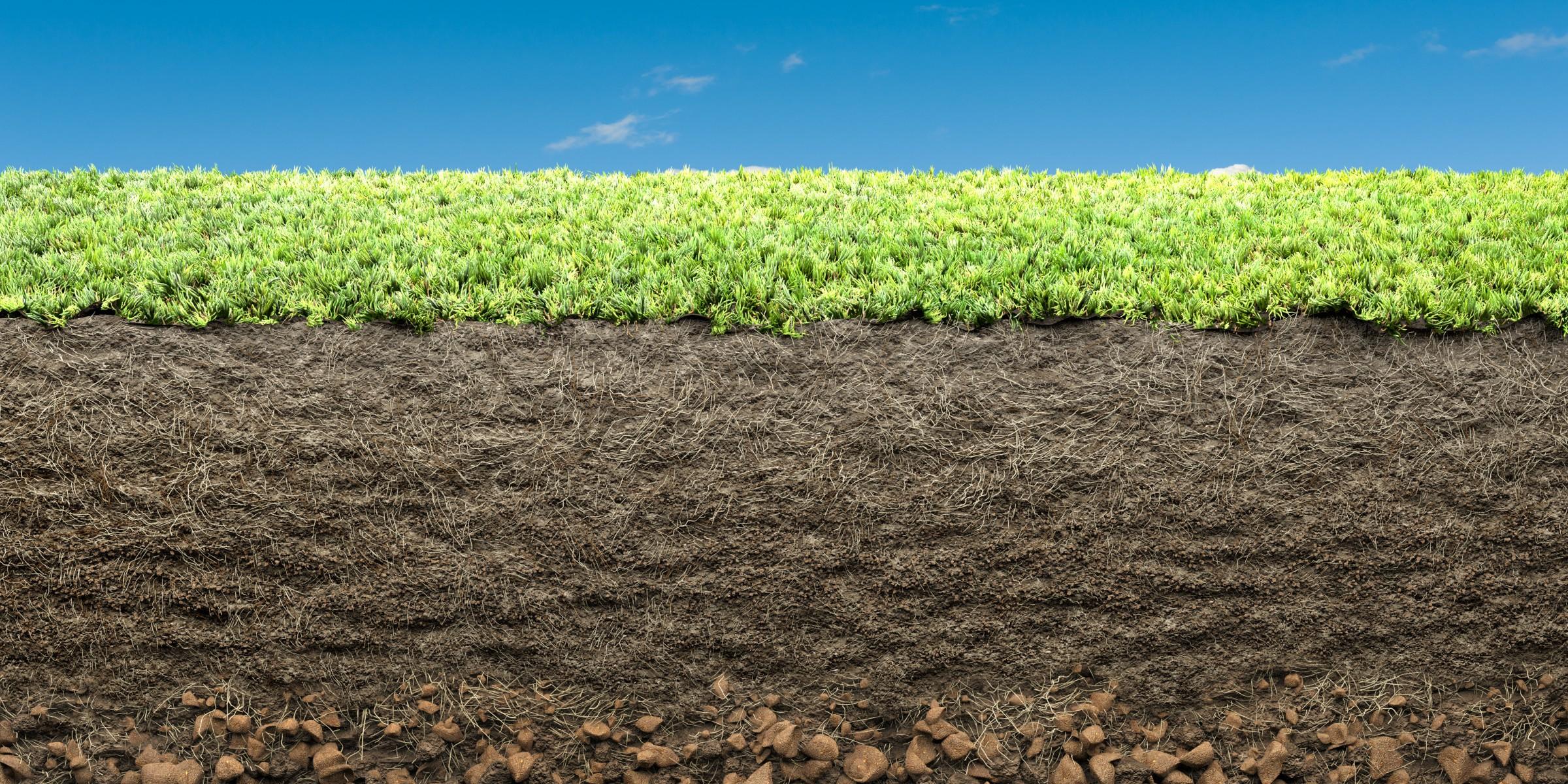 Zéro artificialisation nette : la préservation des sols au coeur de l'organisation territoriale